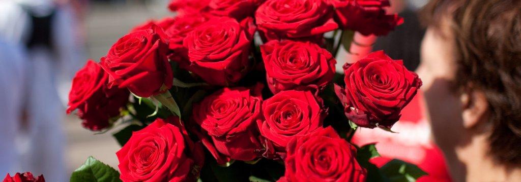 rozen-nieuwsbrief-header